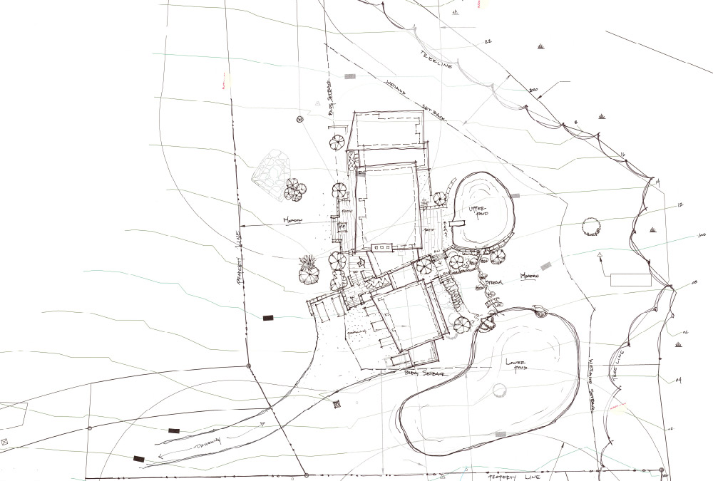 sketch of site plan option 2